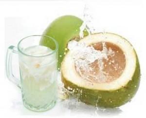 manfaat kelapa bagi kesehatan